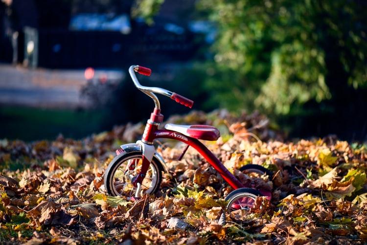 Bicicleta pentru copii de 3 ani in natura